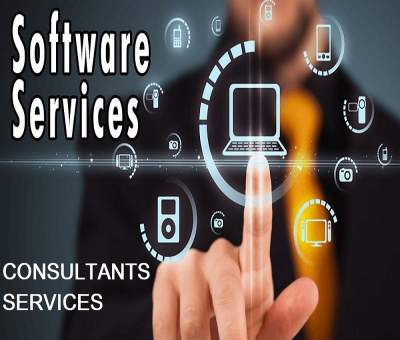 SOFTWARE & CONSULTANTS SERVICES